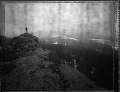 I Stare (Bastiank80) Tags: polaroid woods 4x5 51 largeformat roidweek istare bastiank