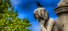 Mlancolie (Tra Te E Me (TTEM)) Tags: blue sky photoshop pigeon statues bleu ciel hdr photomatix lumixfz1000