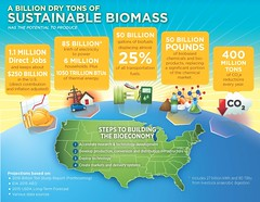 A Billion Dry Tons of Sustainable Biomass graphic (USDAgov) Tags: california whitehouse oce biotechnology biomass ree biofuels departmentoftransportation departmentofdefense departmentofenergy departmentofinterior nationalsciencefoundation biopreferred usenvironmentalprotectionagency bioeconomy harrybaumes drcatherinewoteki