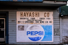 Hayashi Co Topaz (Walt Barnes) Tags: street old building history sign architecture canon river eos japanese store market chinese delta structure calif historic locke topaz levee walnutgrove streetshoot 60d canoneos60d eos60d topazclarity hayashico topazinfocus wdbones99