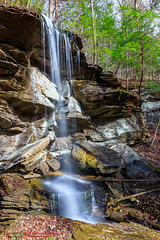 Fall Creek Falls Wheeler Farm Loop - January 3, 2016 (mikerhicks) Tags: winter usa nature landscape geotagged outdoors photography unitedstates hiking tennessee waterfalls spencer fallcreekfalls canecreek tennesseestateparks geo:country=unitedstates camera:make=canon exif:make=canon geo:state=tennessee geo:lat=3573 tamronaf1750mmf28spxrdiiivc exif:lens=1750mm exif:aperture=13 wheelerfarmloop geo:city=spencer wheelerfalls exif:isospeed=200 exif:focallength=17mm canoneos7dmkii camera:model=canoneos7dmarkii exif:model=canoneos7dmarkii geo:lon=85388055 geo:lat=3572996667 geo:lon=8538819000 geo:location=canecreek