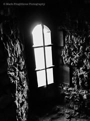 Dudley Zoo & Castle. (Mark Fitzgibbons Photography.) Tags: castle window monochrome dudley