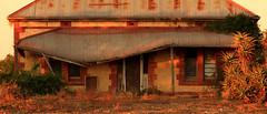 Fallen Facade (Darren Schiller) Tags: door building heritage history abandoned architecture farmhouse facade rural sunrise ruins empty bricks country farming rustic rusted disused verandah southaustralia derelict deserted decaying dilapidated corrugatediron monteith galvanisediron