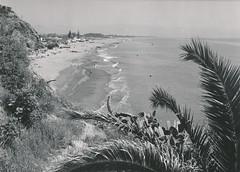 Playa. Torremolinos (Málaga)