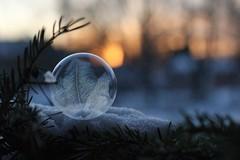 Festligt (Annica Spjuth) Tags: frozen bubbles festligt såpbubblor fotosondag fs160117