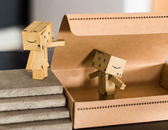 And Then There Were Two (2/52) (abneysc) Tags: friends toy toys friend danbo danboard