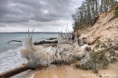 Lake Michigan ... icing preamble (Ken Scott) Tags: winter usa ice beach michigan january lakemichigan greatlakes erosion hdr bluff freshwater voted leelanau pyramidpoint 2016 45thparallel sbdnl sleepingbeardunenationallakeshore mostbeautifulplaceinamerica