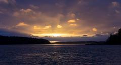 Last light II (Joni Mansikka) Tags: winter light sunset sea sky seascape nature clouds woodland suomi finland landscape seaside colours outdoor january balticsea shore archipelago salo kokkila