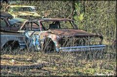 Chevy II Race Car (Photos By Vic) Tags: chevrolet racecar nc junk rust rusty northcarolina chevy junkyard chevyii