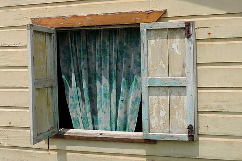 San Jose Succotz - Flower Curtains Are Hip !