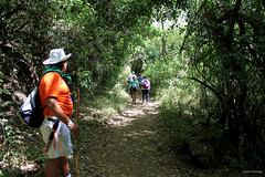 Hike (Fatti Peate) Tags: trees orange verde green beautiful canon landscape outside volcano rocks dad arboles camino hiking elsalvador santaana turismo sendero turism guia volcan centroamerica escalando hikingtrip guiadeturismo elsalvadorimpresionante
