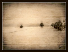 In Sepia (patrick.verstappen) Tags: winter snow texture sepia landscape photo google nikon belgium image pat january sigma textured picassa gingelom ipernity d7100 pinterest ipiccy