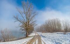 lake Zajarki (057) - foggy morning (Vlado Ferenčić) Tags: lakes lakezajarki zajarki zaprešić croatia hrvatska fog foggymorning foggy nikond600 nikkor173528 sky cloudy winter wintermorning vladoferencic vladimirferencic