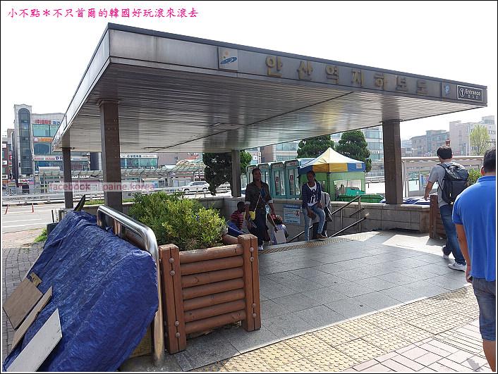 大阜島海邊香氣公園 (1).JPG