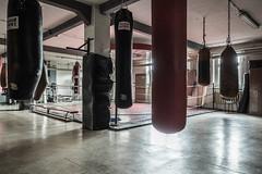 Tropfsteinhöhle (lars_uhlig) Tags: training germany deutschland ring rink boxing potsdam brandenburg babelsberg 2016 motorsporthalle