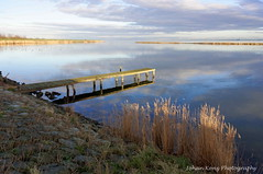 The sun broke through (Johan Konz) Tags: sky reed water netherlands clouds reflections landscape pier outdoor serene waterland waterscape ijmeer seadike uitdammerdijk