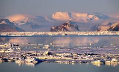 pink sunrise  - weddell sea, antarctica 13 (Russell Scott Images) Tags: pink snow ice sunrise antarctica mauve brash weddellsea