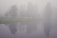 Fog Reflected (trm42) Tags: trees summer reflection fog night suomi finland river helsinki vantaanjoki midsummer juhannus kes y vanhankaupunginkoski sumu vanhakaupunki