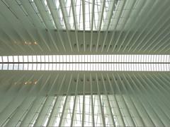 Oculus #5 (Keith Michael NYC (1 Million+ Views)) Tags: nyc newyorkcity ny newyork path manhattan worldtradecenter calatrava wtc oculus santiagocalatrava downtownnewyork downtownmanhattan transportationhub 1wtc oneworldtradecenter