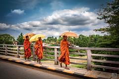 Cambogia - Battambang (Roberto Farina Travel Photography) Tags: people orange rain asia cambodia monk buddhism east oriental battambang monaci cambogia clousd indocina