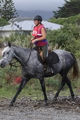 IMG_EOS 7D Mark II201604039889 (David F-I) Tags: horse equestrian horseback horseriding trailriding trailride ctr tehapua watrc wellingtonareatrailridingclub competitivetrailriding sporthorse equestriansport competitivetrailride april2016 tehapua2016 tehapuaapril2016 watrctehapuaapril2016