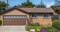 New brick wall - Happy Wall Wednesday (randyherring) Tags: california ca pink flowers blue trees sky cloud brown white house plant green window grass wall garden landscape us flora afternoon unitedstates gardening outdoor sanjose sidewalk driveway brickwall wires garagedoor purity
