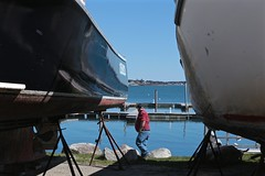 A Dog's Tail in Harpswell, Maine (smilla4) Tags: dog boats candid maine canine harpswellmaine dolphinmarina