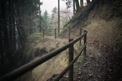 unterwegs... (Toni_V) Tags: mist fog fence schweiz switzerland europe dof nebel suisse bokeh hiking rangefinder trail mp svizzera wanderung wanderweg gelnder 2016 hff svizra tsstal leicam schnebelhorn 35lux messsucher 160418 35mmf14asphfle typ240 toniv m2404423