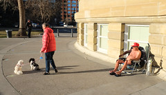 Spring Is In The Air (Sherlock77 (James)) Tags: people woman dog man calgary streetphotography memorialparklibrary