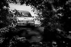 Bergrennen-Homburg-2015-2 (Pascal Martin Photographie) Tags: auto cars car sport race autos wald rennen peugeot hillclimb saarland 2015 homburg bergrennen
