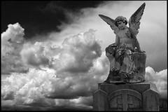 ange et les nuages (LUDOVIC. R) Tags: noir ange micro nuage et blanc 34