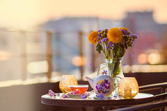 Life is too short to be living somebody else's dream. -Hugh Hefner (Yuri Figuenick) Tags: light sunset red stilllife flower yellow table evening focus colorful purple tea bokeh wither vase teapot backlit emotional teatime tabletop canonef135mmf2l canoneos5dmarkiii
