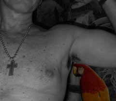 MM UA birds 4 7 2013 B (Monte Mendoza) Tags: shirtless man guy pits nipple cross dude uomo colorized hombre bicep homme ua noshirt armpits pecho sanschemise underarms axila sincamisa