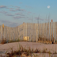 moonset Santa Rosa beach (weltreisender2000) Tags: santa morning sunlight moon beach fence landscape florida dune rosa moonset