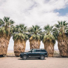 The only #desert mirage we see here are boundaries. #RangeRover Photo: @nikk_la - photo from landroverusa (landroverorlando) Tags: auto usa cars car orlando automobile florida united group rover land fields fl states autos landrover rangerover luxury automobiles wwwlandroverorlandocom