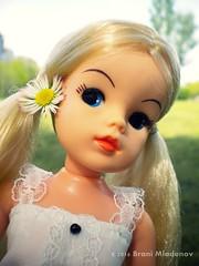 Pretty Sindy (Brani's fashion dolls) Tags: nature body active pedigree sindy sindydolls 80sdolls