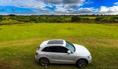 R89A4083 (AB.PhotoZA) Tags: trees cars canon garden landscape southafrica colours route audi abphotoza