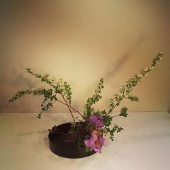 Saori's #ikebana