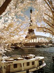 Eiffel Tower / IR (Jose Luis Garcia Tucci) Tags: paris art ir spring artistic eiffeltower eiffel toureiffel infrared colorinfrared seineriver infrarrojo primtemps parisphoto trueir panasonicdmcfz50 jlgarciatucci trueirphotography pasarelledeibilly jlgarciatucciphotography