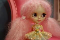 Versailles... (Primrose Princess) Tags: pink ballerina doll princess queen blythe takara tutu frenchfurniture customblythedoll pinkmohairreroot ooakcustomblythedoll dollydreamland dollythrone