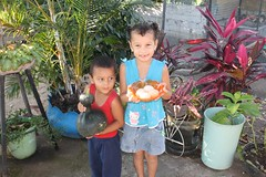 IMG_1645.CR2 (dernst) Tags: garden cosecha huerta