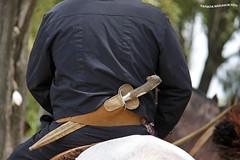 Desfile Dia de la Tradicion 5 (pniselba) Tags: horse criollo caballo buenosaires gaucho tradicion provinciadebuenosaires sanantoniodeareco areco diadelatradicion