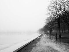 Nebeltraum (Mikko L.) Tags: park blackandwhite fog finland helsinki kallio panasonic elintarhanlahti hakaniemi frozensea tokoinranta gm1 dmcgm1 lumixdmcgm1 panasoniclumixgm1