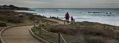 5O1A5078 ('SeraphimC) Tags: ocean california centralcoast
