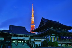 Zojoji Temple & Tokyo Tower (mon_masa) Tags: japan temple tokyo twilight nightscape dusk tokyotower nightview nightphoto magichour bluemoment