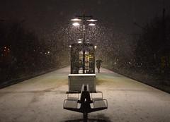 alone with the snow (Mister.Marken) Tags: white mistermarken farstastrandj trainstation winter snow larsboda flickrfam night lights lamp outdoor