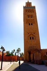 Marrakech - February 2016 (300 jours  Paris) Tags: africa travel photography morocco maroc marrakech maghreb medina casablanca koutoubia