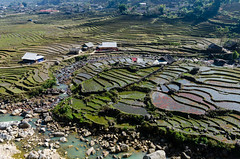 Colors of rice 2 (bambo_85) Tags: people mountains nature colors asia view vietnam ethnic sapa