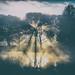 Solar+Landing+-+Syon+Park+Gardens+by+Simon+%26+His+Camera