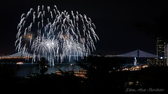 View from Coit Tower - Bay Lights Re-Lighting and Super Bowl City Fireworks Show - 013016 - 09 (Stan-the-Rocker) Tags: sanfrancisco sony coittower northbeach embarcadero ferrybuilding telegraphhill nex sanfranciscooaklandbaybridge sfobb sb50 baylights sel1855 stantherocker